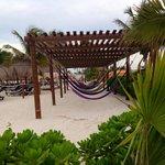 Beachfront hammocks !