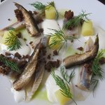 Herring and Sprats
