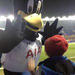 Chirpy with a young Spurs fan