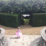 Princess enters afternoon tea