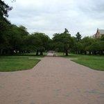 Caminhos dentro da universidade