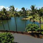 Property Lagoons