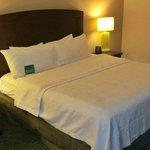 Suite 138 Bedroom
