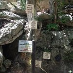 Signs at the Cenote