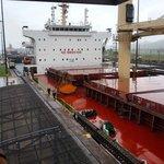 A grain ship going through the Gatun Locks