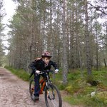 Cycling through the Scottish forests will wear out even the most energetic kids !