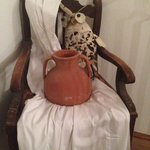 Owl on the commode