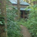 Green Cabin.