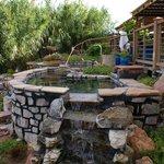 Hot Spring pools