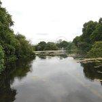 Beautiful Park,