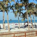 пляж (104188910)