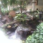 jardines en el interior del hotel