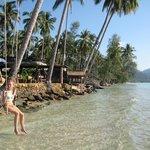 Hotel Beach Swing