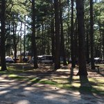 View of water and electric tent sites