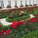 Rose Garden in Salzburg