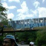 Metrorail del Zoo