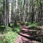 merging onto the Colorado Trail