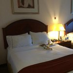 Holiday Inn Express Hotel & Suites Farmington Hills Foto