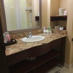 Photo de Holiday Inn Express & Suites Detroit - Farmington Hills