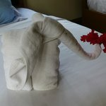 the towels - Nice touch from housekeeper