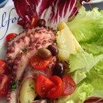 octopus salad is interesting
