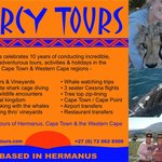Percy Tours celebrates 10 years of providing excellent holidays