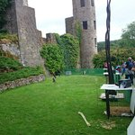 Falconry at Blarney castle