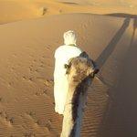 Por el desierto en dromedario