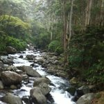 Beginning of Waterfalls hike