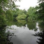 Pond St Stephens Greens