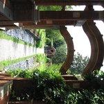 Gilded Era Gardens