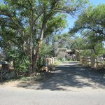 Rancho Gallina