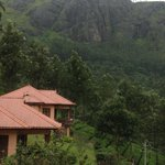 View from Aranyaka Resort Munnar