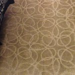 Dirty Carpet 骯髒的地毯