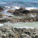 Rocky property beach