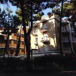 Photo de Park Hotel Pineta