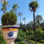 l'Alcazar et ses beaux jardins