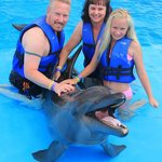 Swimming with the Dolphins - Less than 5 minutes from the hotel - arranged by hotel