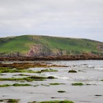 Wembury Beach - July 2014