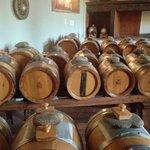 Balsamic vinegar, 30 years in the making.