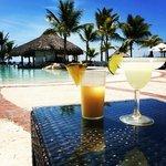FreshCo Pool Bar