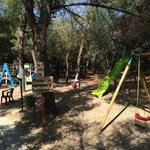 Area Giochi pineta / Mini Club