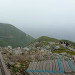 Skyline Trail View in the Fogg