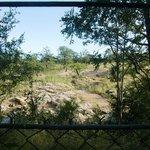 Uitzicht op de wildernis buiten het hek van Bateleur Boskamp (maart 2014)