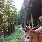 The clog wheel train ride