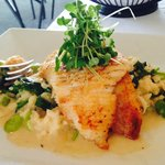 Skate special...very large portion, risotto very good