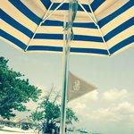 Ritz Flag