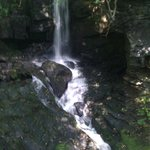 Stream and waterfall Lumsdale valley