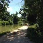 Dirt path along the C&O Canal