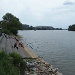 The Potomac riverside